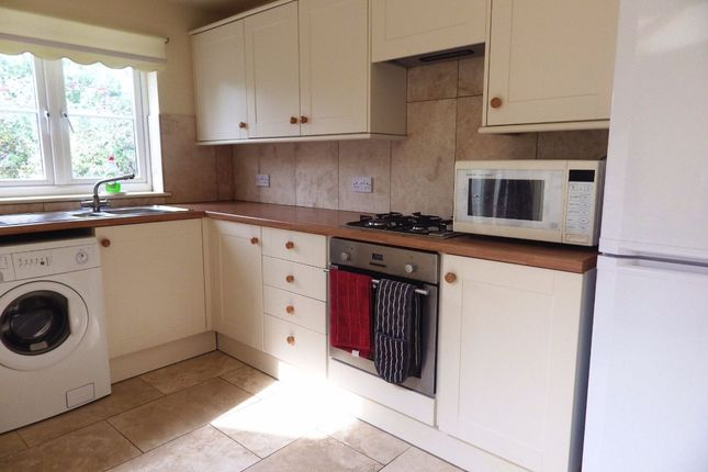 Thumbnail Terraced house to rent in Gloucester Road, Stratton, Cirencester