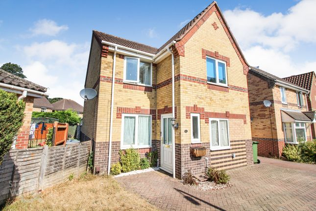 Thumbnail Detached house to rent in Association Way, Dussindale, Norwich