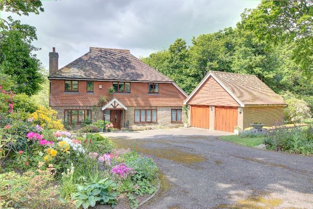 Thumbnail Detached house for sale in Ore Place, St. Hellen's, Hastings