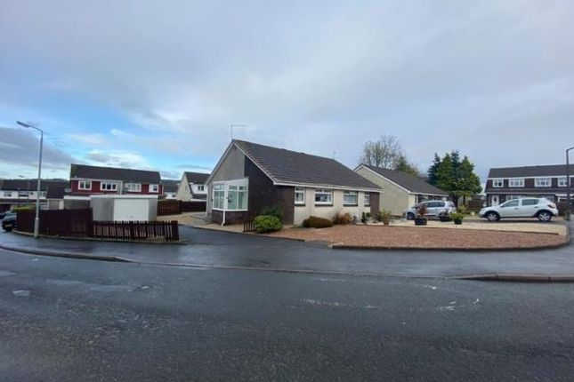 Thumbnail Semi-detached bungalow to rent in 1 Cairn Terrace, Galston