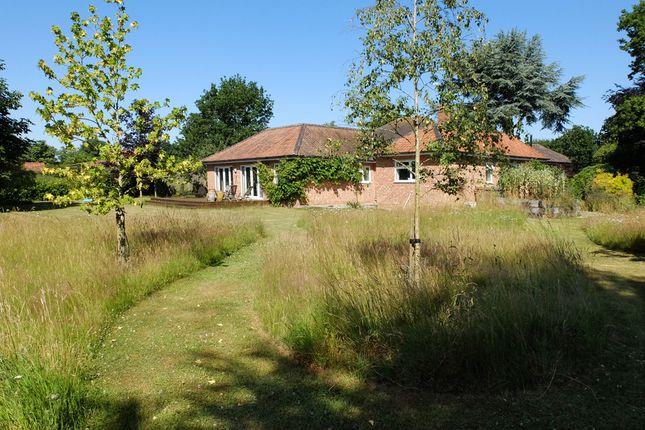 Thumbnail 4 bed detached bungalow for sale in Blackheath, Wenhaston, Halesworth