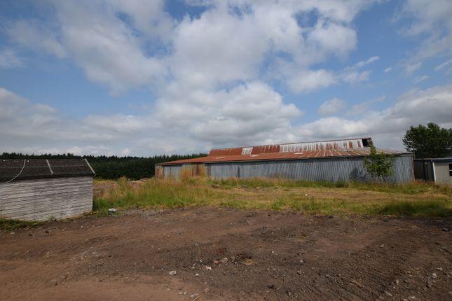 Land for sale in Drumcairn Farm, Abernethy, Perth PH2