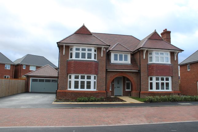 Thumbnail Detached house to rent in Langtoft Close, Hamilton, Leicester