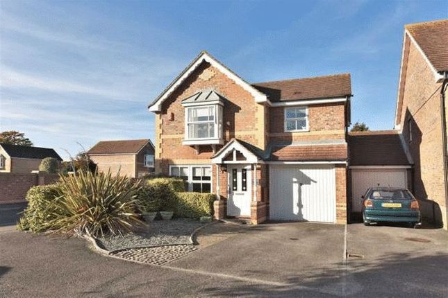Thumbnail Link-detached house to rent in Priestfields, Titchfield Common, Fareham