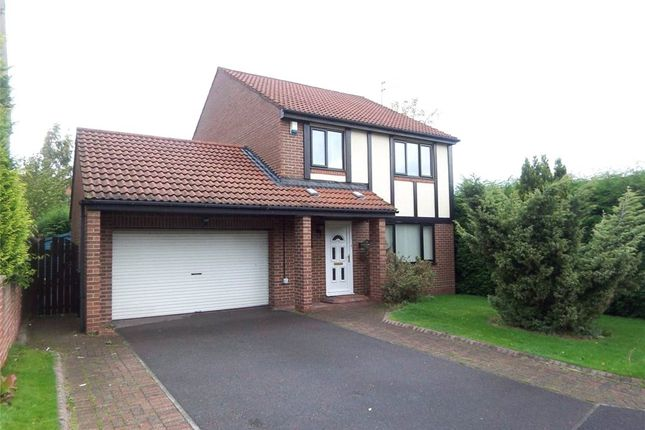 Thumbnail Detached house to rent in Kira Drive, Pity Me, Durham
