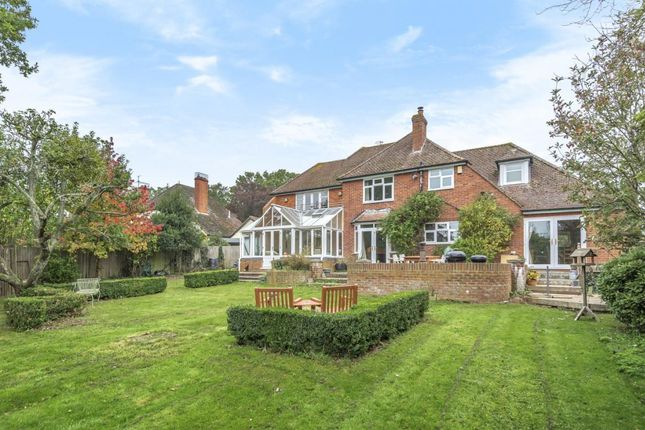 Thumbnail Detached house for sale in Wood Lane, Beech Hill