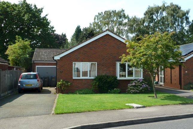 Thumbnail Bungalow to rent in Harvey Drive, Sutton Coldfield
