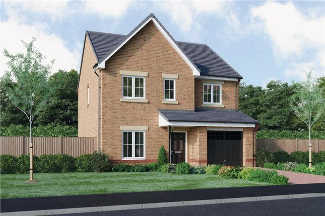 "Thumbnail Detached house for sale in ""The Foster"" at Ladyburn Way, Hadston, Morpeth"
