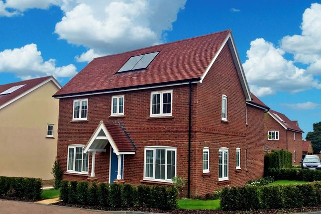 Thumbnail Detached house for sale in Walnut Tree Way, Off High Street, Meppershall
