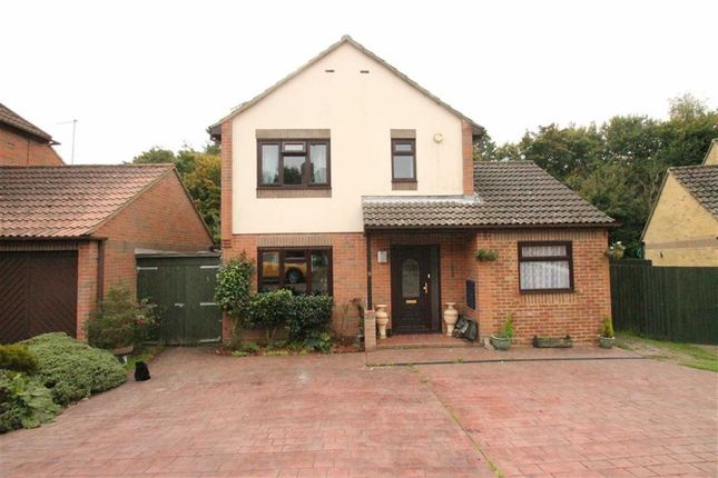 Thumbnail Detached house for sale in Salcey Close, St Leonards-On-Sea, East Sussex