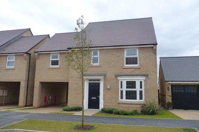 Thumbnail Property to rent in Harrier Close, Weldon, Corby