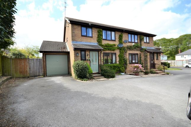 Thumbnail Semi-detached house for sale in Waterloo Avenue, Basingstoke