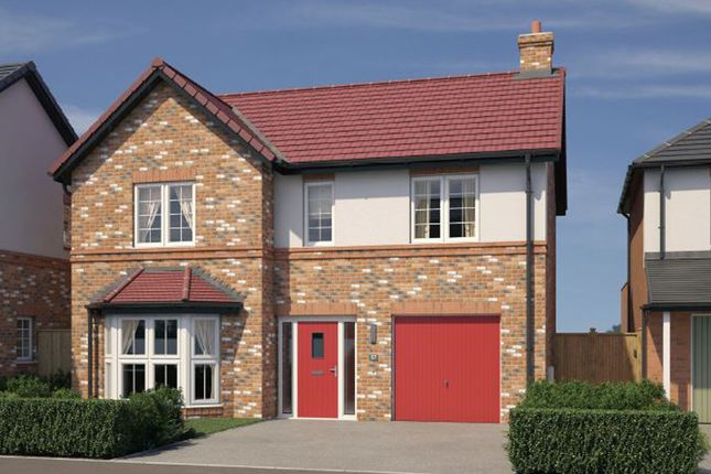 "Thumbnail Detached house for sale in ""The Norbury"" at Chilton, Ferryhill"