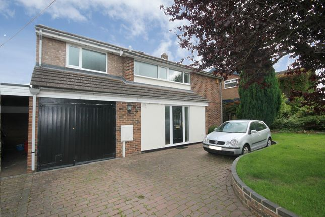 Thumbnail Detached house to rent in Paddock Close, Castle Donington, Derby