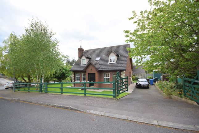 Thumbnail Detached house for sale in Drumantine View, Newry