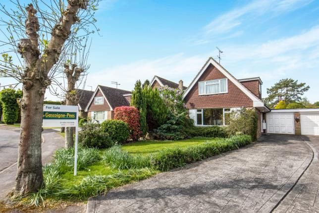 Thumbnail Bungalow for sale in Normandy, Guildford, Surrey