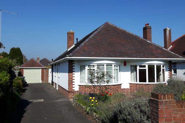 Thumbnail Detached bungalow to rent in Craigmoor Avenue, Queens Park, Bournemouth, Dorset