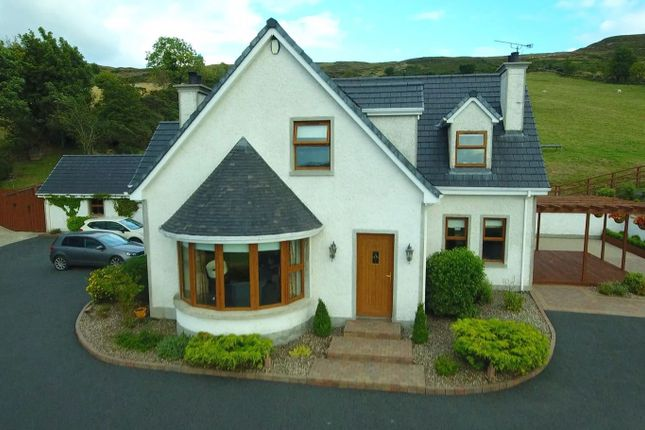 Thumbnail Detached house for sale in Mountain Road, Camlough