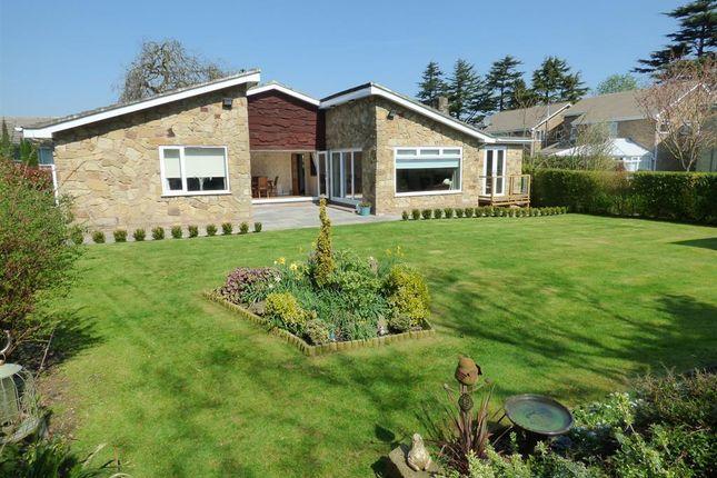 Thumbnail Detached bungalow for sale in The Lawns, Beverley