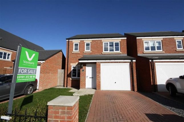 Thumbnail Detached house to rent in Sandringham Way, Newfield, Chester Le Street, County Durham