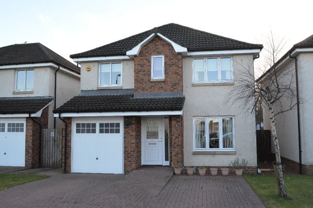 Thumbnail Detached house for sale in Marion Wilson View, Larbert