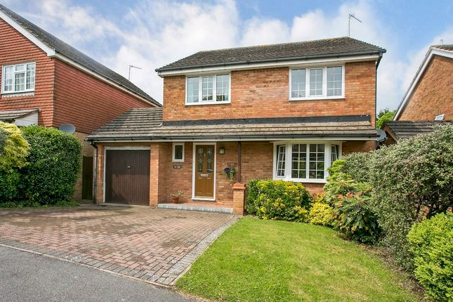 Thumbnail Detached house for sale in Eridge Drive, Crowborough