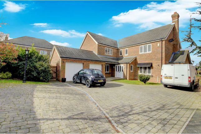 Thumbnail Detached house for sale in Snowdrop Road, Hartlepool