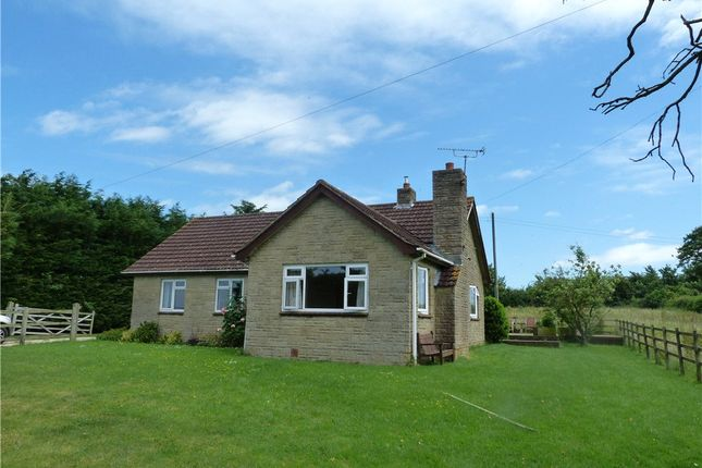Thumbnail Detached bungalow to rent in The Bungalow, Hewletts Farm, Stalbridge, Sturminster Newton