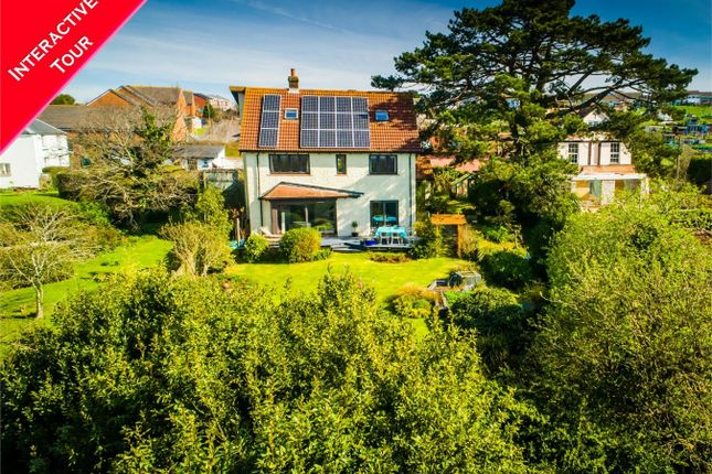 Thumbnail Detached house for sale in Foxhole, Pound Lane, Exmouth, Devon