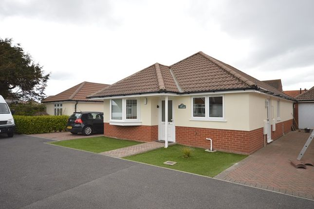 Thumbnail Bungalow to rent in Smugglers Way, Milford On Sea, Lymington