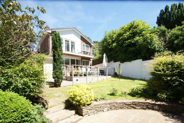 Thumbnail Link-detached house for sale in Haldon Road, Torquay