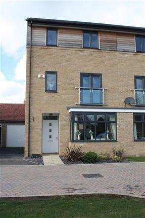 Thumbnail Semi-detached house to rent in Tern Drive, St. Ives, Huntingdon