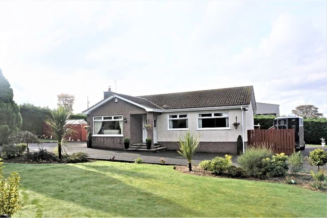 Thumbnail Detached bungalow for sale in Ballynashee Road, Ballyclare