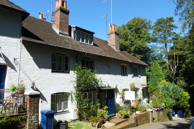 Thumbnail Terraced house to rent in Sandrock, Haslemere