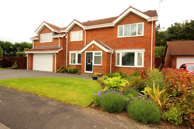 Thumbnail Detached house for sale in Silloth Drive, Washington