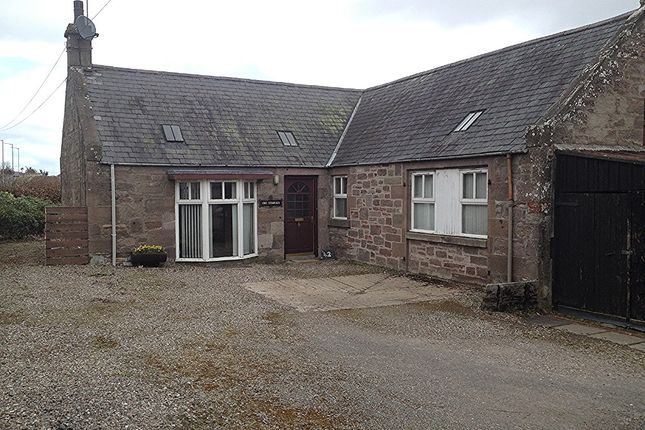 Thumbnail Bungalow to rent in 42 Trinity Road, Brechin, Angus