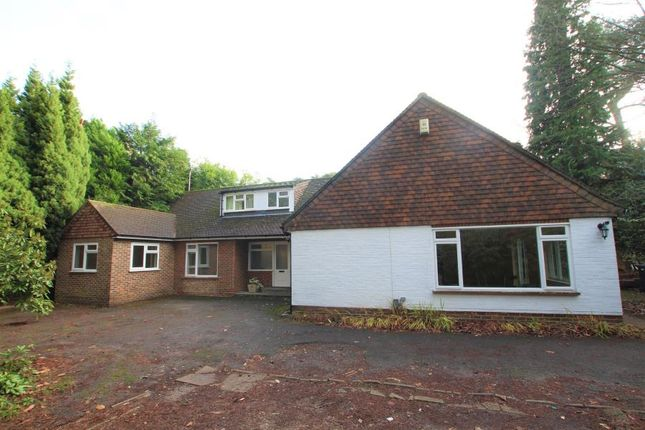 Thumbnail Detached bungalow to rent in Road House Estate, High Street, Old Woking, Woking