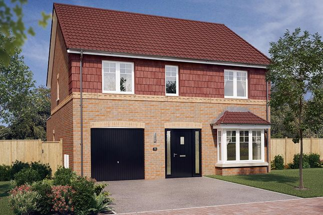 "Thumbnail Detached house for sale in ""The Rosebury"" at Walker Drive, Stamford Bridge, York"