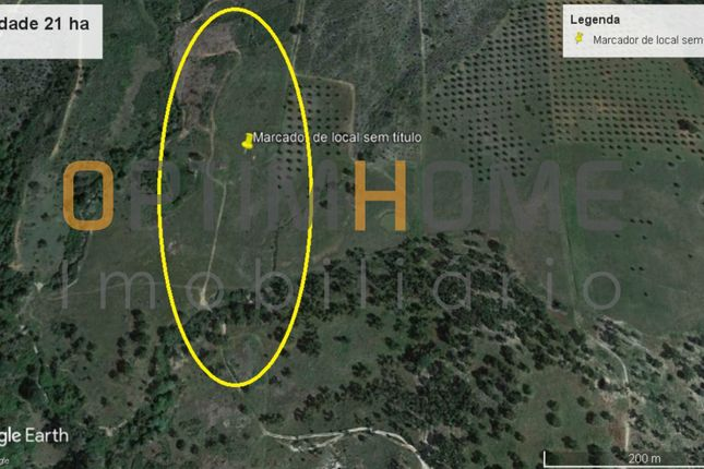 Land for sale in 7425 Montargil, Portugal