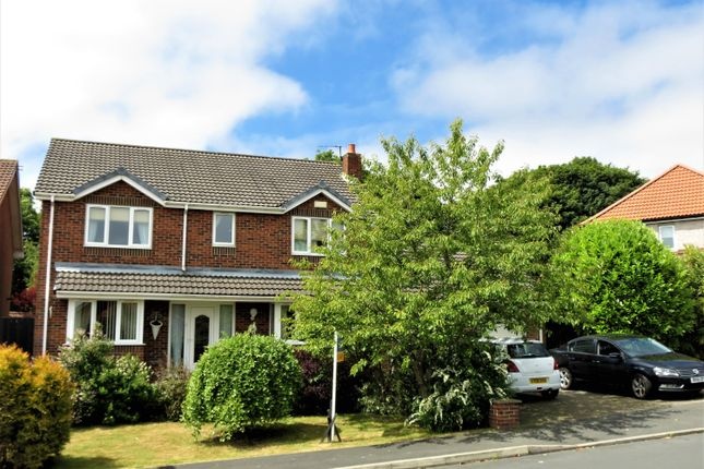 Thumbnail Detached house for sale in Willow Grove, Horden, County Durham