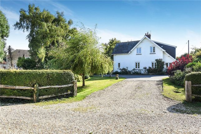 Thumbnail Detached house for sale in Winterborne Zelston, Blandford Forum