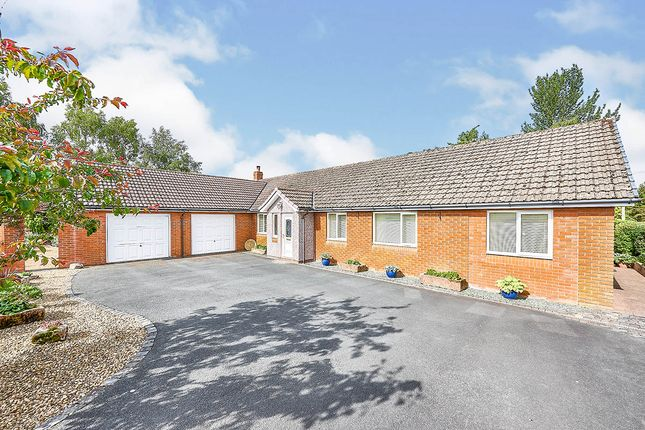 Thumbnail Bungalow for sale in Rosley, Wigton, Cumbria