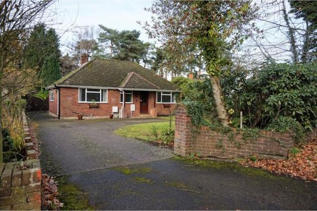 Thumbnail Detached bungalow to rent in Finchampstead Road, Wokingham