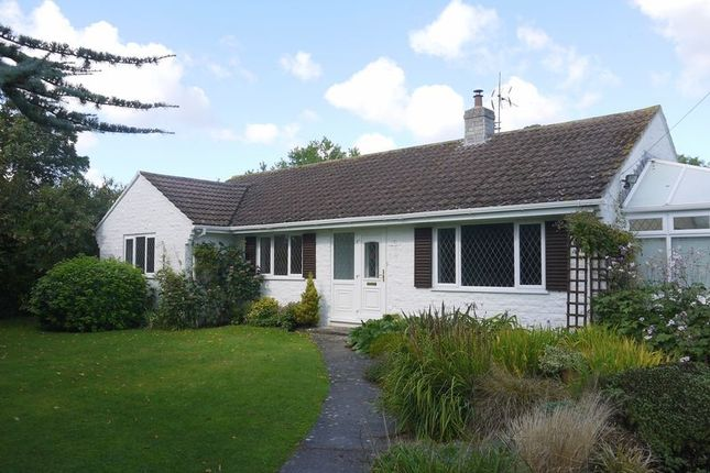 Thumbnail Detached bungalow to rent in Station Road, Charlton Mackrell, Somerton