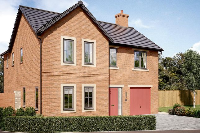 "Thumbnail Detached house for sale in ""The Norbury"" at Garden House Drive, Acomb, Hexham"