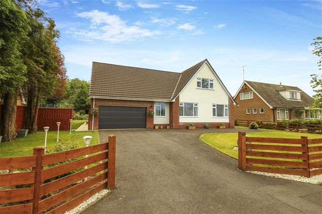 Thumbnail Detached house for sale in Errington Road, Ponteland, Northumberland