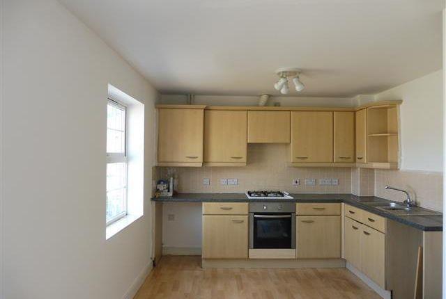 Thumbnail Property to rent in Hamilton Circle, Hamilton, Leicester