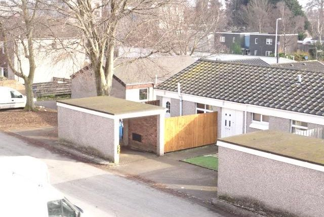 Thumbnail Bungalow to rent in Southampton Place, Dundee