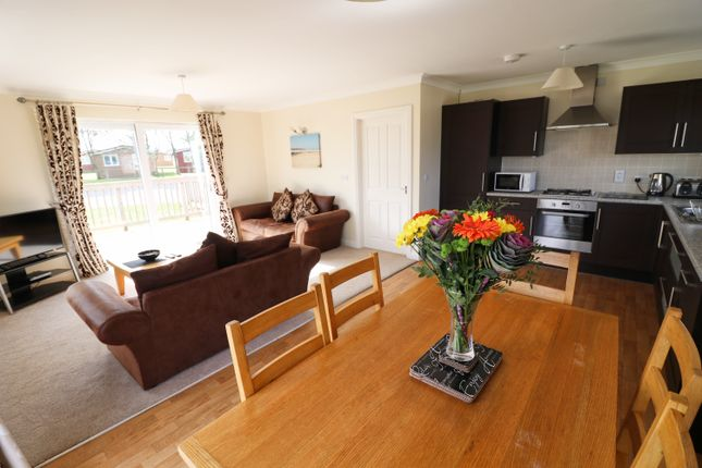 Thumbnail Bungalow for sale in Atlantic Bays, St Merryn