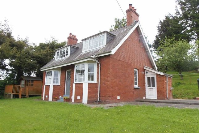 Thumbnail Detached bungalow to rent in Woodgreen, Kerry Road, Kerry Road, Newtown, Powys